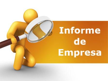 Desglosando el Informe de Empresa